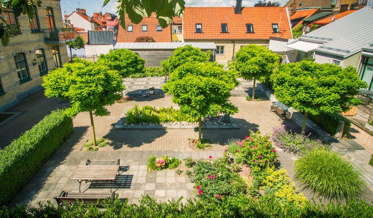 55+ på Västra skolan i Ystad